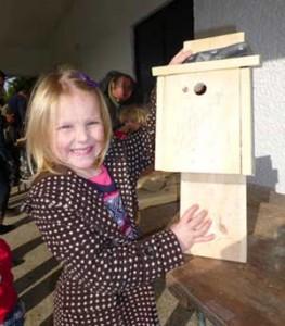 Building bird boxes